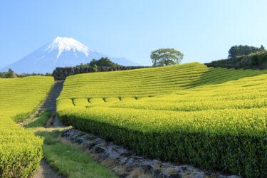 【2020年11月更新】富士市周辺でホワイトニングにおすすめの歯科9選|静岡県